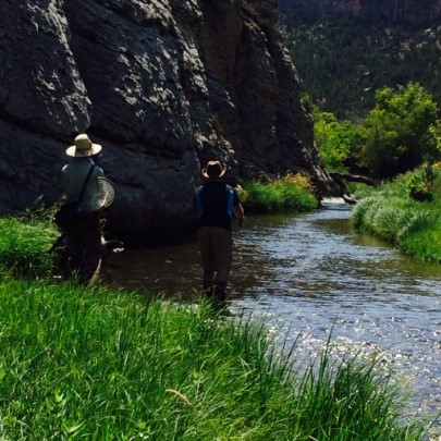 Fishing a river in Wyoming